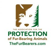 Join The Fur-Bearers