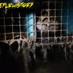 Inside a Quebec fur farm (2014).